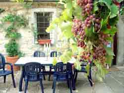 La Terrazza, a self catering villa to rent in Tuscany